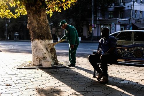 The invisible tree painter (Armenia, 2018)